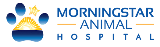 Morningstar Animal Hospital